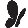 MSN - Logo